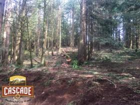 Cascade Selective Harvesting