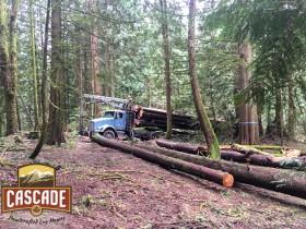 Cascade-sCascade Selective Harvestingelective-harvest