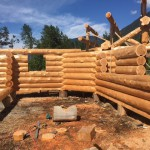 Latewood Finish - Cascade Handcrafted Log Homes