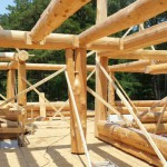 Cascade Handcrafted - New Jersey Latewood Project