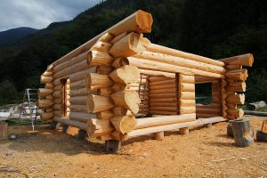 Naturally Passive Log Home